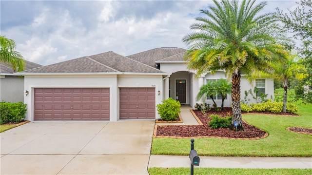 9671 Orange Jasmine Way, Tampa, FL 33647 (MLS #T3192660) :: Lovitch Realty Group, LLC