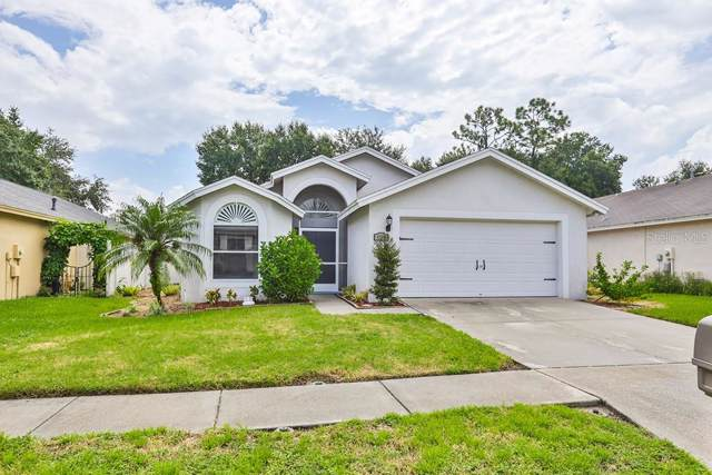 4717 Preston Woods Drive, Valrico, FL 33596 (MLS #T3192678) :: Team 54