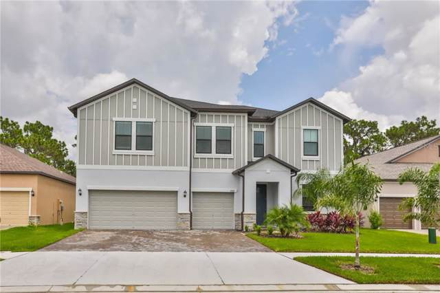 13307 Orca Sound Drive, Riverview, FL 33579 (MLS #T3192684) :: Team Bohannon Keller Williams, Tampa Properties