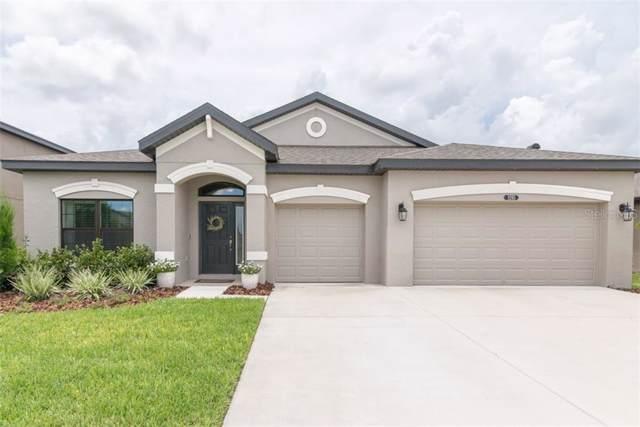 8205 Mallow Mirror Lane, Land O Lakes, FL 34637 (MLS #T3192722) :: Team 54