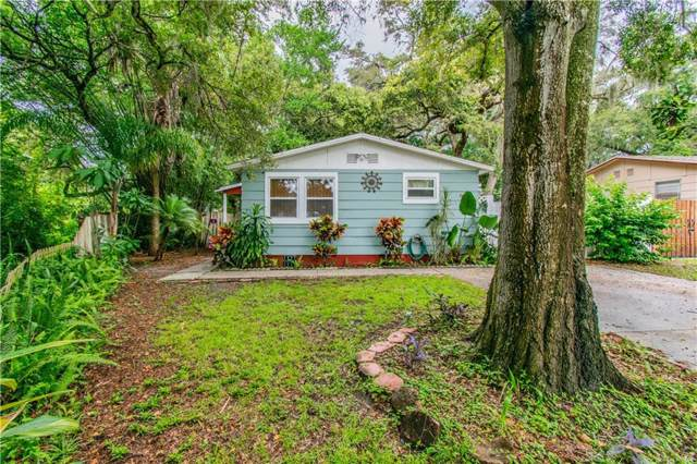 504 Belmont Street, Safety Harbor, FL 34695 (MLS #T3192760) :: Bridge Realty Group