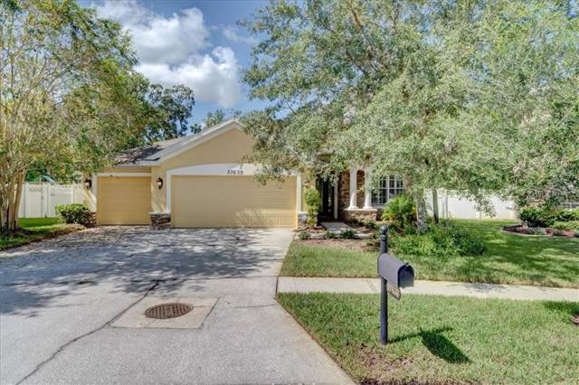 27639 Kirkwood Circle, Wesley Chapel, FL 33544 (MLS #T3192862) :: The Figueroa Team