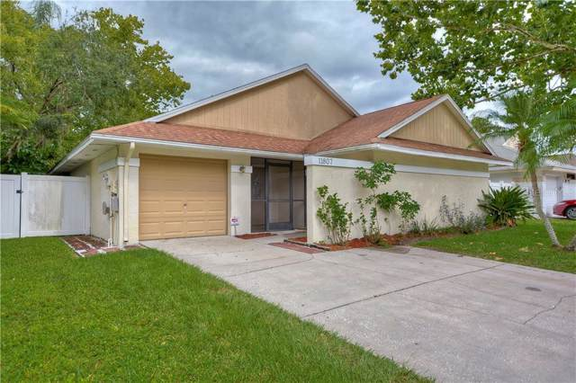 11807 Hickorynut Drive, Tampa, FL 33625 (MLS #T3192881) :: GO Realty