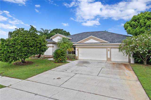 16128 Carden Drive, Odessa, FL 33556 (MLS #T3192912) :: Team Bohannon Keller Williams, Tampa Properties