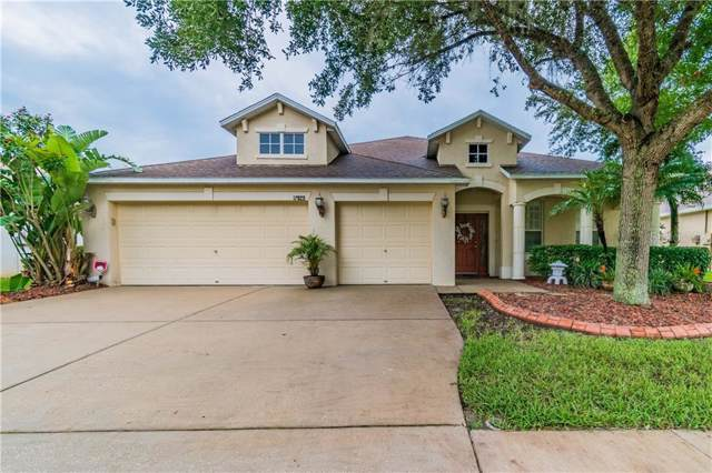 17929 Souter Lane, Land O Lakes, FL 34638 (MLS #T3192921) :: Griffin Group