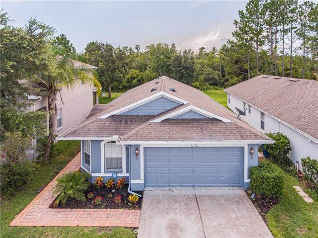 21400 Morning Mist Way, Land O Lakes, FL 34637 (MLS #T3192950) :: Lovitch Realty Group, LLC