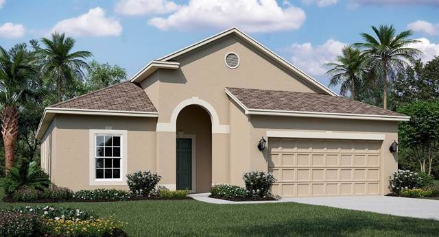 2743 Creekmore Court, Kissimmee, FL 34746 (MLS #T3192978) :: Griffin Group