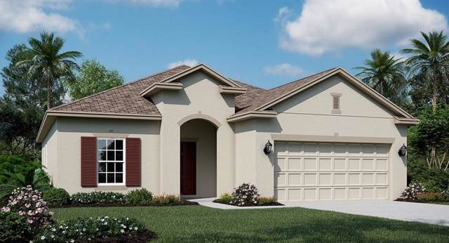 2736 Creekmore Court, Kissimmee, FL 34746 (MLS #T3192993) :: Griffin Group