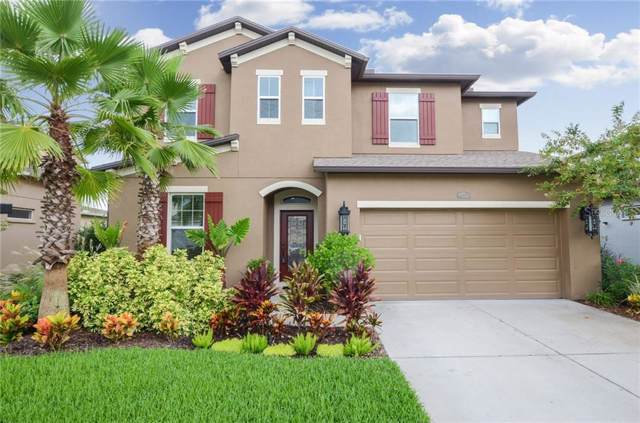 4532 Scarlet Loop, Wesley Chapel, FL 33544 (MLS #T3192999) :: Team Bohannon Keller Williams, Tampa Properties