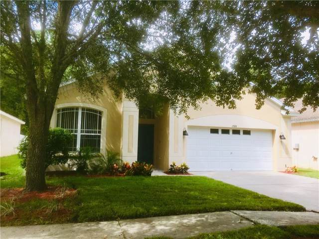 15924 Stags Leap Drive, Lutz, FL 33559 (MLS #T3193014) :: Kendrick Realty Inc