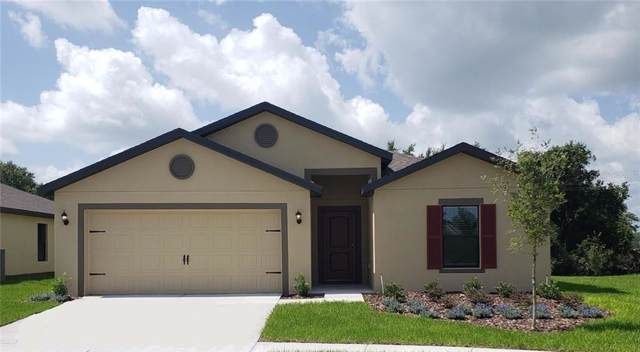 1192 Moyle Way, Mascotte, FL 34753 (MLS #T3193139) :: Griffin Group