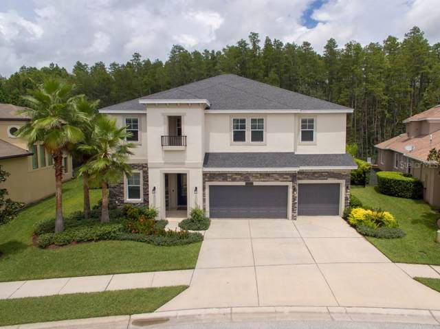 15217 Wind Whisper Drive, Odessa, FL 33556 (MLS #T3193193) :: Premier Home Experts