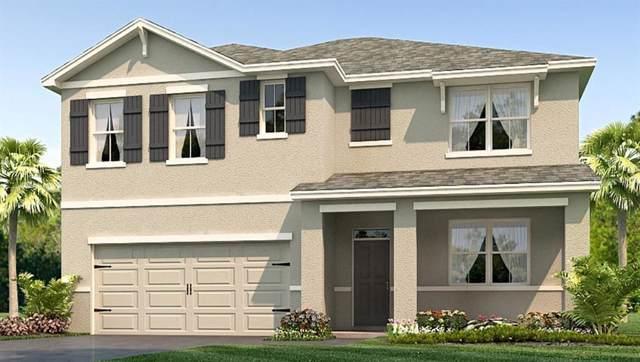 6362 Silverado Ranch Boulevard, Zephyrhills, FL 33541 (MLS #T3193202) :: Griffin Group