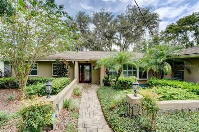 8925 Donna Lu Drive, Odessa, FL 33556 (MLS #T3193256) :: Premium Properties Real Estate Services