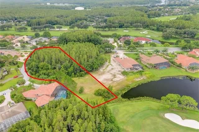 19002 Cour Estates, Lutz, FL 33558 (MLS #T3193258) :: Lockhart & Walseth Team, Realtors