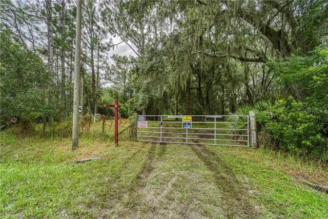 3207 Tina Marie Circle, Wimauma, FL 33598 (MLS #T3193261) :: Griffin Group
