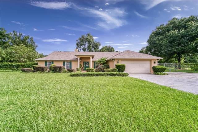 10060 Joe Ebert Road, Seffner, FL 33584 (MLS #T3193292) :: Team 54