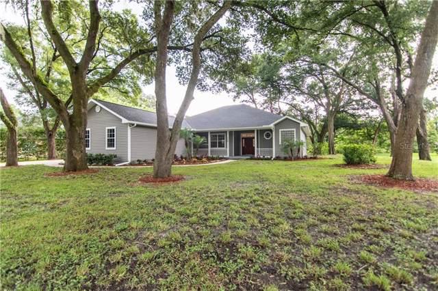 3326 Sam Allen Oaks Circle, Plant City, FL 33565 (MLS #T3193298) :: The Duncan Duo Team