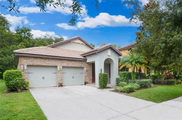 20334 Chestnut Grove Drive, Tampa, FL 33647 (MLS #T3193303) :: Team Bohannon Keller Williams, Tampa Properties