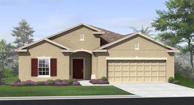 1740 Benevento Street, Saint Cloud, FL 34771 (MLS #T3193357) :: Griffin Group