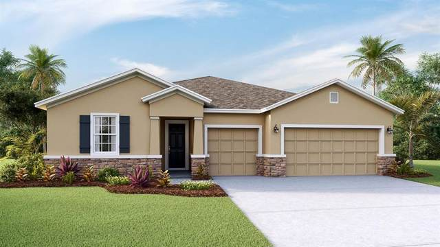 5022 Jagged Cloud Drive, Wimauma, FL 33598 (MLS #T3193360) :: Team Bohannon Keller Williams, Tampa Properties