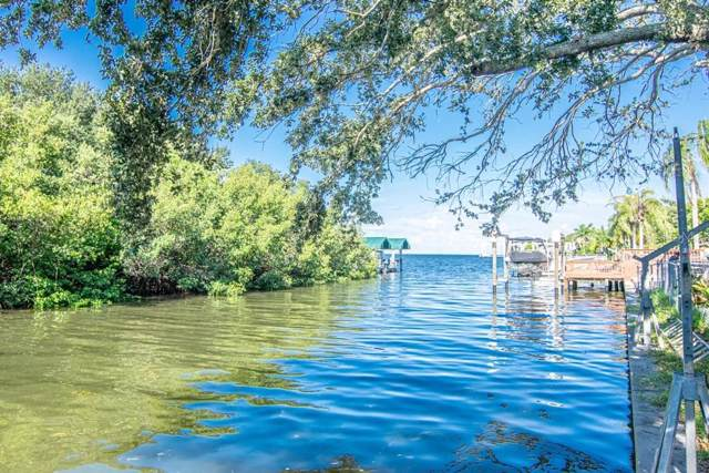 5002 W San Miguel Street, Tampa, FL 33629 (MLS #T3193365) :: Bustamante Real Estate