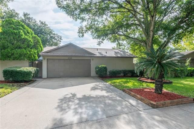 639 Bonnie Boulevard, Palm Harbor, FL 34684 (MLS #T3193393) :: RE/MAX CHAMPIONS