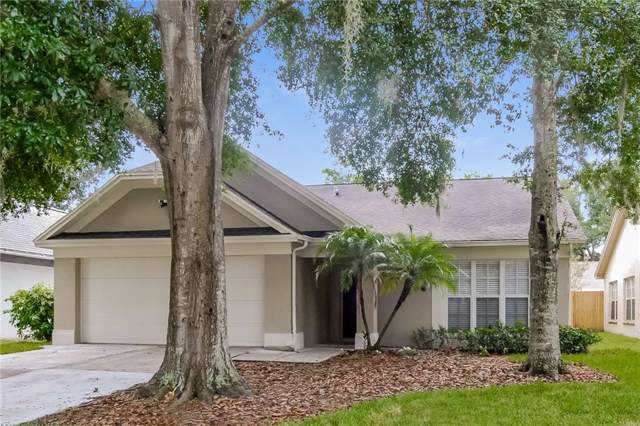 Address Not Published, Valrico, FL 33596 (MLS #T3193396) :: Team Bohannon Keller Williams, Tampa Properties