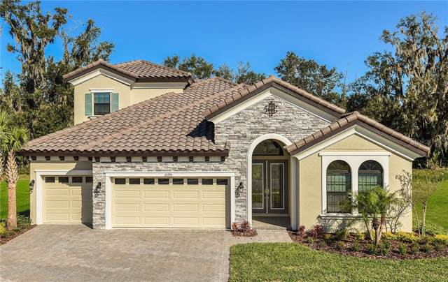 21795 Amelia Rose Way, Land O Lakes, FL 34637 (MLS #T3193428) :: The Brenda Wade Team
