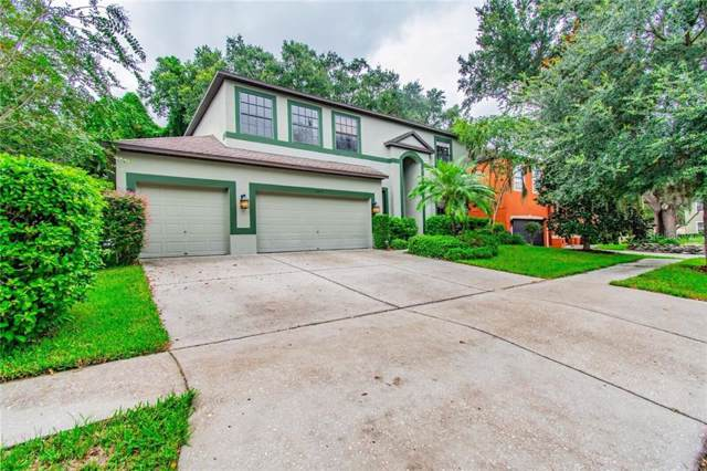 2015 Abbey Trace Drive, Dover, FL 33527 (MLS #T3193434) :: Cartwright Realty