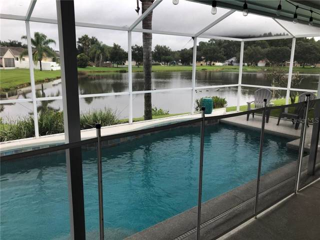 29419 Sea Dahlia Pass, Wesley Chapel, FL 33543 (MLS #T3193442) :: Team Bohannon Keller Williams, Tampa Properties