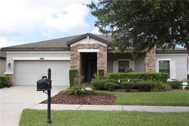 8526 Bluevine Sky Drive, Land O Lakes, FL 34637 (MLS #T3193448) :: GO Realty