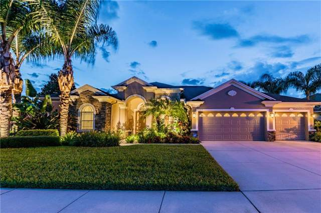 3213 Marble Crest Drive, Land O Lakes, FL 34638 (MLS #T3193453) :: Lovitch Realty Group, LLC