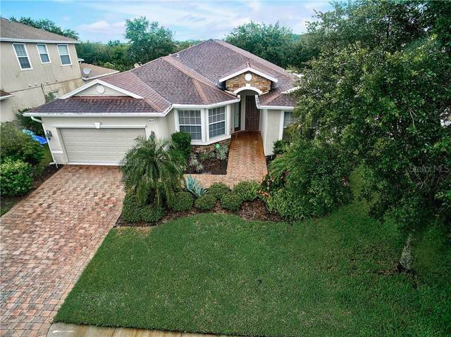6647 38TH Lane E, Sarasota, FL 34243 (MLS #T3193497) :: Griffin Group