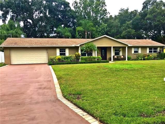 2105 Diane Avenue, Valrico, FL 33594 (MLS #T3193515) :: Kendrick Realty Inc