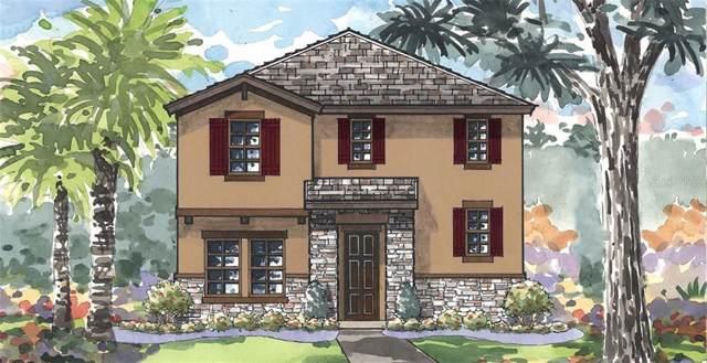 12414 Triple Creek Boulevard, Riverview, FL 33579 (MLS #T3193520) :: Bridge Realty Group