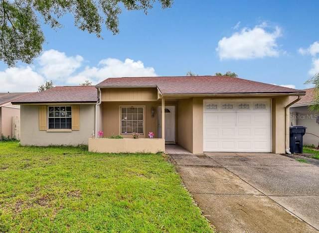 12410 Queensland Lane, Tampa, FL 33625 (MLS #T3193549) :: Team Bohannon Keller Williams, Tampa Properties