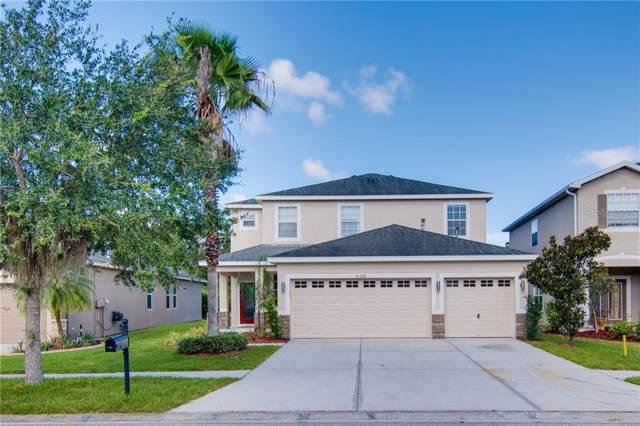20228 Merry Oak Avenue, Tampa, FL 33647 (MLS #T3193569) :: Cartwright Realty