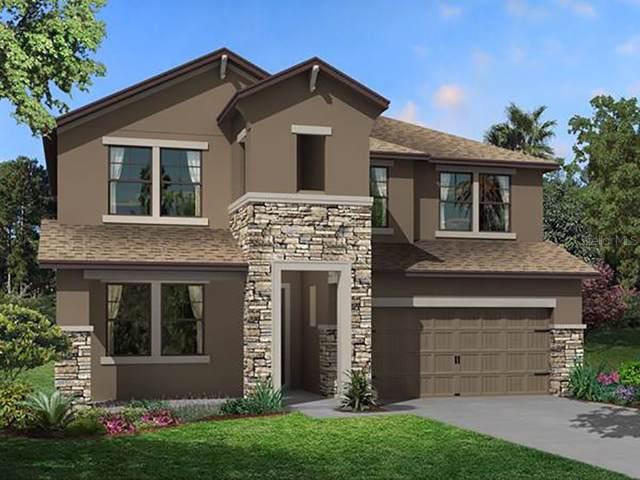 10906 Sage Canyon Drive, Riverview, FL 33578 (MLS #T3193594) :: Bridge Realty Group