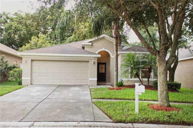 1129 Emerald Hill Way, Valrico, FL 33594 (MLS #T3193622) :: The Duncan Duo Team