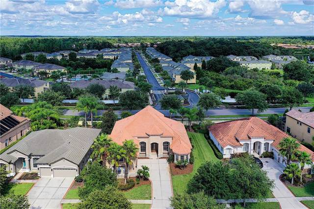 20115 Shady Hill Lane, Tampa, FL 33647 (MLS #T3193624) :: Cartwright Realty