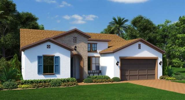 14397 Creekbed Circle, Winter Garden, FL 34787 (MLS #T3193637) :: Bustamante Real Estate