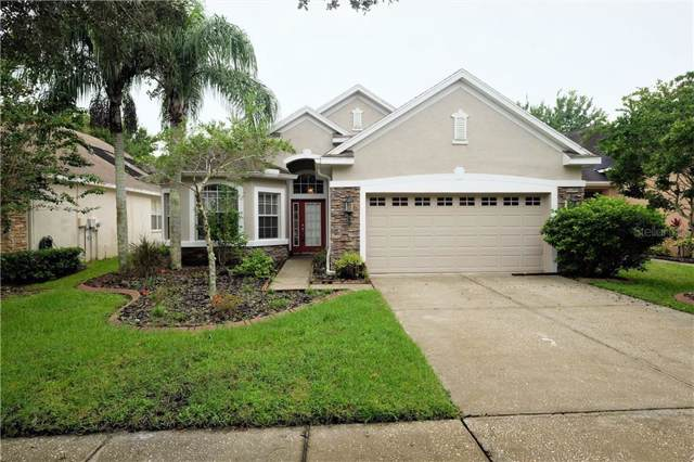 11636 Greensleeve Avenue, Tampa, FL 33626 (MLS #T3193656) :: Andrew Cherry & Company