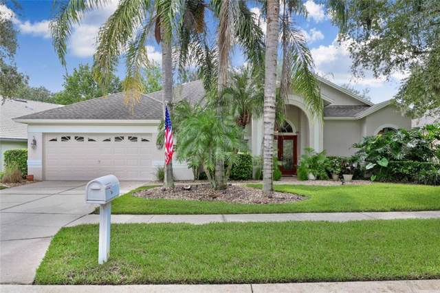 18923 Fairwood Court, Tampa, FL 33647 (MLS #T3193660) :: Dalton Wade Real Estate Group