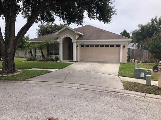 4504 Lace Cascade Court, Lutz, FL 33558 (MLS #T3193696) :: Team Bohannon Keller Williams, Tampa Properties