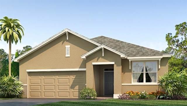 16435 Little Garden Drive, Wimauma, FL 33598 (MLS #T3193727) :: The Duncan Duo Team