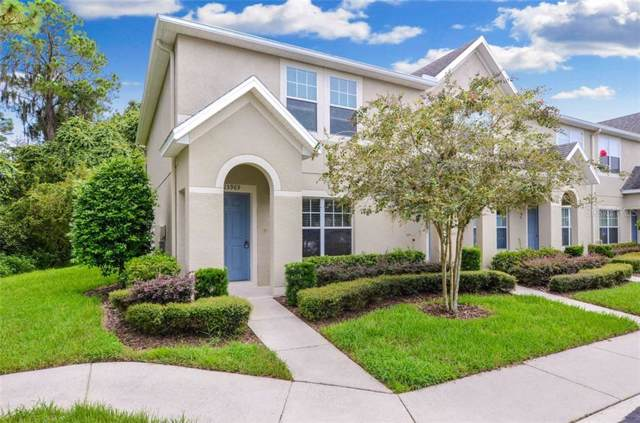 15969 Fishhawk View Drive, Lithia, FL 33547 (MLS #T3193733) :: Cartwright Realty