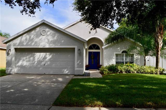 13705 Staghorn Road, Tampa, FL 33626 (MLS #T3193746) :: Cartwright Realty