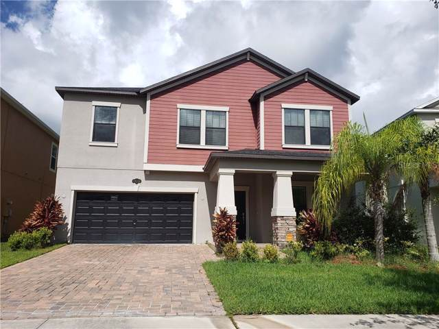 19348 Paddock View Drive, Tampa, FL 33647 (MLS #T3193788) :: Dalton Wade Real Estate Group