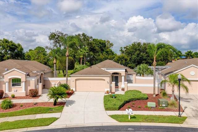 214 Royal Palm Way, Spring Hill, FL 34608 (MLS #T3193795) :: Mark and Joni Coulter   Better Homes and Gardens